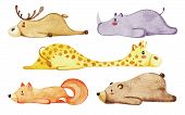 Set Of Different Cute Animals. Lazy Animals. Watercolor poster