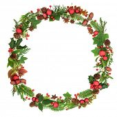 Traditional  winter and Christmas wreath garland with natural flora and fauna and red bauble decorat poster