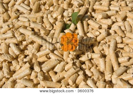 Wood Pellets And Flower