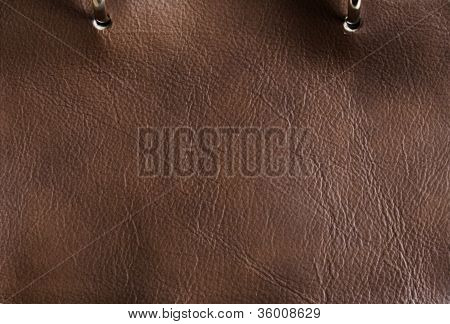 Brown Leather Detail