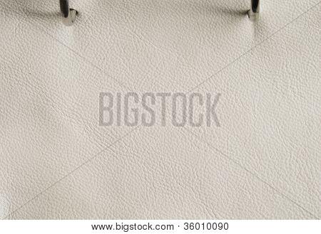 Corium Bianco Leather Texture