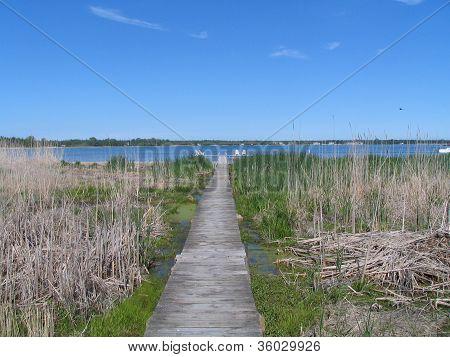 Off the 'Beachen' Path