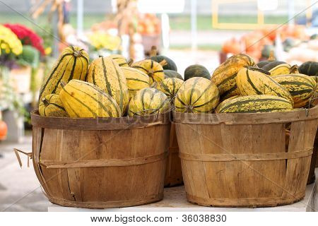 Yellow and green striped squash in baskets