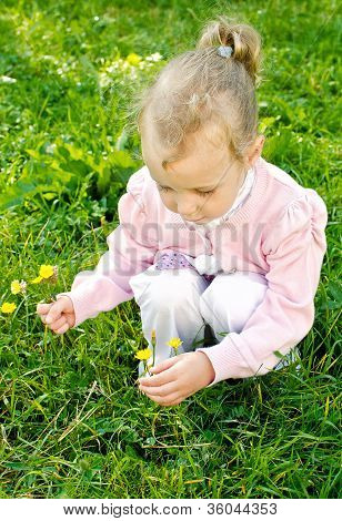 Little Girl Gathering Flowers In The Park