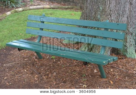 Bench In A City Park.