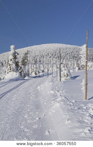 Cross Country Skiing Way In The Mountains