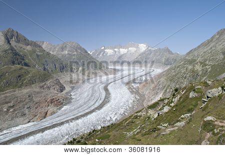 Aletch glacier in summer