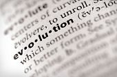 Dictionary Series - Religion: Evolution