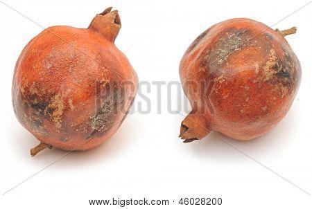rotten pomegranate on white