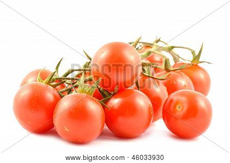 Cherry Tomatoes On A Branch
