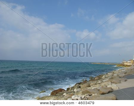 Beach Of Mediterranean Sea Intel Aviv Israel