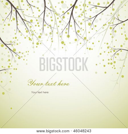 Spring Tree Branches Background