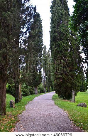 Lapidary park pathway