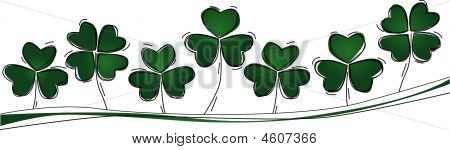 Three And Lucky Four Leaf Clovers In A Row