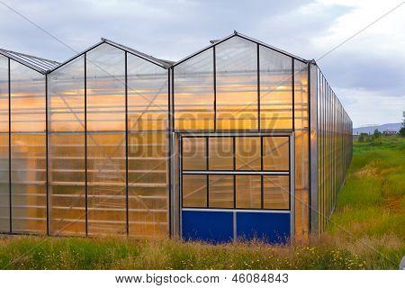 Greenhouse geothermal