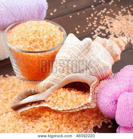 Body Care Accessories: Sea Salt, Towel, Bath Sponge And Shell