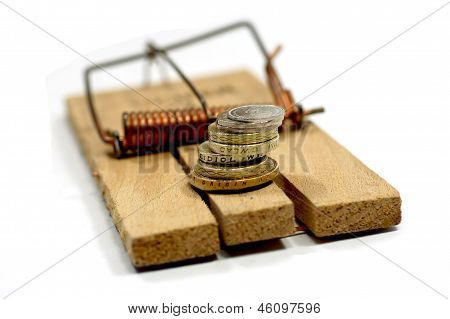 Money on mouse trap