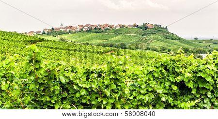 Small Village in Alsace