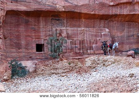 Rock Cut Tombs at Petra