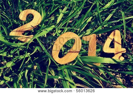wooden numbers forming 2014, as the new year, on the grass