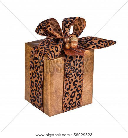Festive gift wrapped present isolated