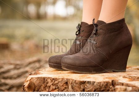 Boots On Stump