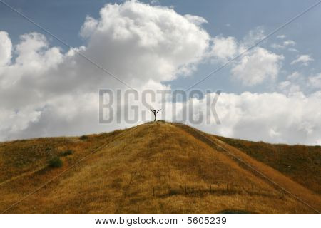 Cross Like Tree on Hill