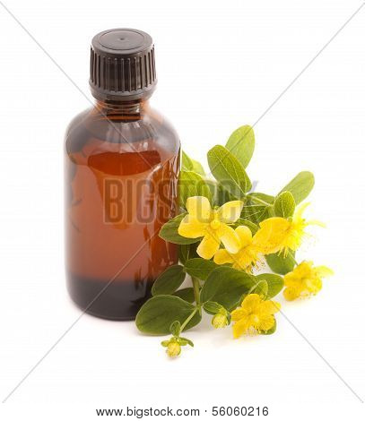 Essential Oil Of Hypericum Perforatum.