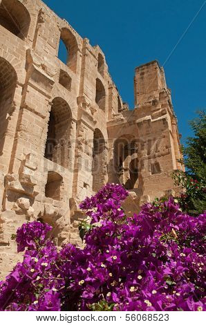 Ruins With Flowers