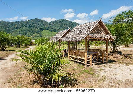 Gazebo In Tropical Park