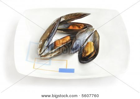 Steamed mussels on the plate.