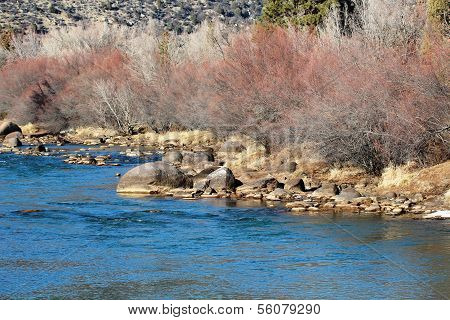 Animas River...