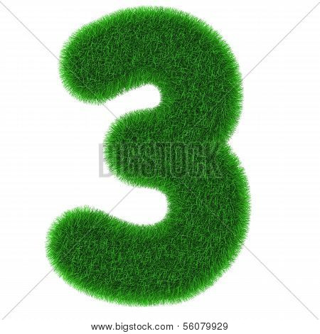Number Three Made Of Grass