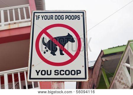 Dog Poop Sign