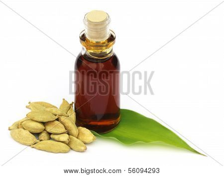Cardamons With Essential Oil