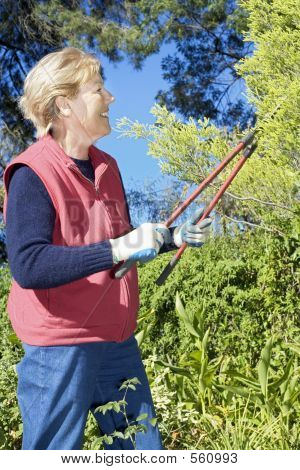 Pruning The Garden