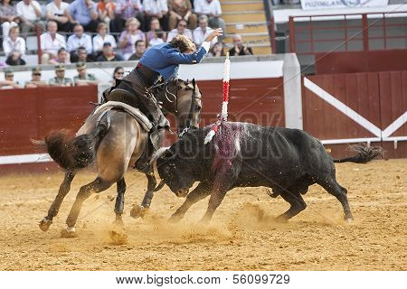Spanish bullfighter on horseback Pablo Hermoso de Mendoza bullfighting on horseback nailing flags th