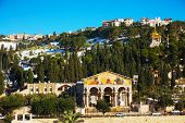 pic of gethsemane  - Church of All Nations in Jerusalem Israel - JPG