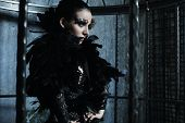 image of raven  - Fashion model in fantasy dress posing in steel cage - JPG
