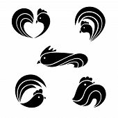 image of black-cock  - The black stylized cocks on a white background - JPG