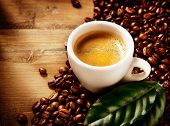 picture of coffee coffee plant  - Coffee - JPG