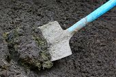 pic of excrement  - Close up of some manure with spade