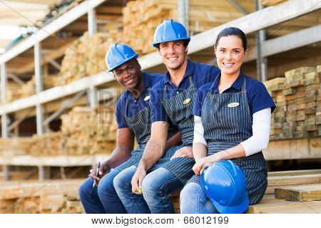 group of cheerful young hardware store co-workers resting at timber yard