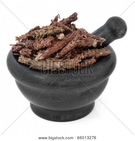 Self heal spike herb chinese herbal medicine in a black stone mortar with pestle over white background. Xia ku cao.