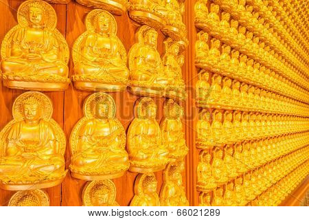 ten thousand golden buddhas lined up along the wall