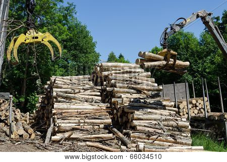 Crane Claw And Stack Of Logs Near Truck Trailer