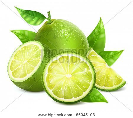 Vector illustration of fresh limes with leaves.