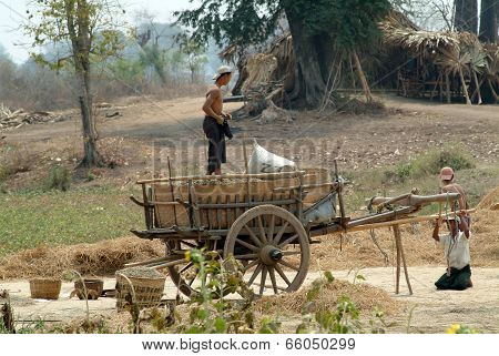 People Loading Up Carts Crops.