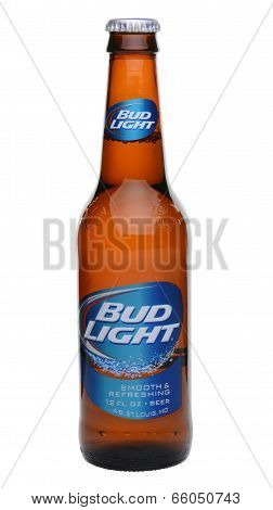 Single Bud Light Bottle