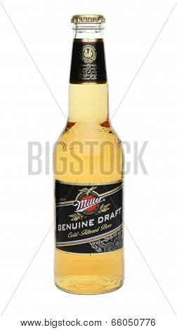 Single Miller Genuine Draft Bottle